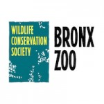 Bronx Zoo Coupons